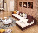 Conjunto genuino moderno del sofá