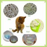 Racimos de tofu ecológica cat litter