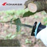 La chaîne sans frottoir de Koham a vu