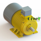 1KW 100rpm gerador magnético, Fase 3 AC gerador magnético permanente do vento, a utilização da água com Baixa Rotação