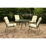 De Eettafel en 8 Chairs Garden Outdoor Furniture van de zitkamer (fs-4020+4207)