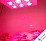 중국 제조자 756W 옥수수 속 T8 LED 관 플랜트