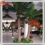 De binnen Decoratieve Palm van de Kokosnoot van het Fiberglas Kunstmatige