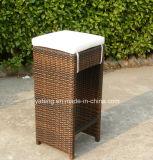 Barra Ultravioleta-Resistente de la rota del diseño de los muebles al aire libre populares del jardín fijada por Chair &Table para 6-10person (YT172)