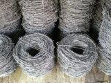 Filo galvanizzato elettrotipia per la rete fissa dalla fabbrica di Yaqi