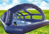 덮개를 가진 큰 팽창식 수영 수영장
