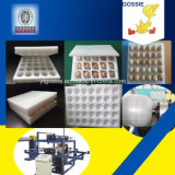EPE 거품에 의하여 두껍게 한 장 닭은 안전 플라스틱 계란 상자 기계를 Eggs