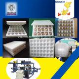 닭 계란 쟁반에게 플라스틱 계란 상자 기계를 하는 EPE 거품에 의하여 두껍게 하는 장