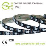 Preço por grosso de fábrica em Cores RGB 12V DCWS2812 tira de LED com marcação RoHS Aprovação