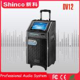 """Shincoの熱い販売のUSB CD Bluetoothのスクリーンが付いている移動式劇場のスピーカー12 """""""