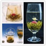 Естественных здоровых китайского искусства Блум чай /органических цветущими цветущих чай
