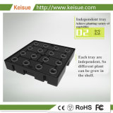 Keisue LEDライト耕作およびHydroponic成長する機械