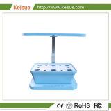 Keisue Büro-Schreibtisch-Wasserkulturmikrobauernhof