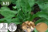 製造業者は100%の自然なIsatisのルートエキスの/Radix Isatidisのエキスを供給する