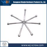 China Fornecedor Precision chaparia de Cabeça Redonda Sextavada Parafuso em aço inoxidável