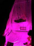 Amplio espectro de la planta crezca crezca en el interior de la luz LED 400W