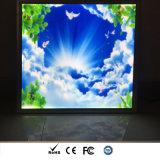 Cielo Secne LED panel cuadrado de luz para la decoración de oficina