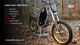 Motor elétrico principal da motocicleta da tecnologia 10kw do motor dourado