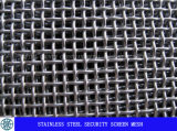 Het Scherm van de Veiligheid van het roestvrij staal in 11meshx0.9mm