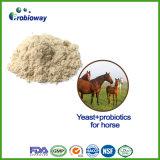 Erstklassige Pferden-Hefe-und Probiotics Massentierfutter-Zusatz