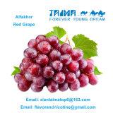 Heiße Verkauf 100% starke Alfakher rote Trauben-Aromen für Huka in Arabien