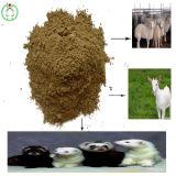 Vente chaude de qualité d'aliments pour animaux de farine de poisson de protéine de 72%
