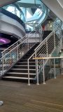 ステンレス鋼ガラスのポストを柵で囲む階段ガラス手すりか階段