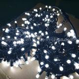 IP65 Waterproof luzes da corda da alta qualidade para a decoração ao ar livre do casamento
