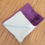 Il supplemento ispessisce il panno morbido di corallo e la coperta polare 70*100cm 650GSM del panno morbido