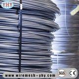 L'elettrotipia ha galvanizzato il collegare usato per la maglia del metallo