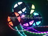 Indicatore luminoso del nastro della striscia del LED RGB con 3 anni di garanzia