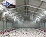 自動プレハブの鉄骨構造の養鶏場の建物の小屋の鶏の肉焼き器家デザイン