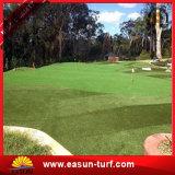 Barato ajardinar la hierba artificial de la hierba del césped de la estera artificial china de la alfombra