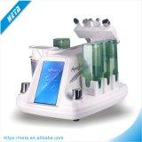 Equipo de múltiples funciones 4 de la belleza en 1 máquina del cuidado de piel en uso del salón