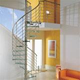 Стекло шаги спиральную лестницу с Поручень из нержавеющей стали цена
