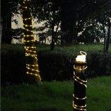 La corde de DEL allume l'éclairage de décoration de fête de Noël de vacances d'accent de 2 fils