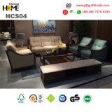 Italienisches echtes Leder-Sofa stellte für Hauptmöbel ein (HCS05)
