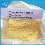 Trenbolone 아세테이트 100mg/Ml 신진대사 스테로이드 분말 Trenbolone 아세테이트