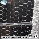 別の高さの電流を通された二重ねじれの六角形の網の網