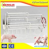 Высокое качество многофункциональный зал Farrowing свиней