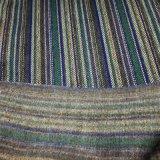 Prodotto tinto intessuto cuscino del sofà della presidenza della tessile della famiglia del tessuto del poliestere