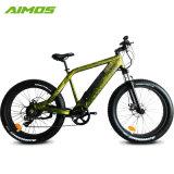 1000W puissant Moteur Brushless Fat vélo électrique