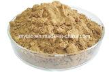 0.25%-1% Anethol-reiner natürlicher Fenchel-Startwert- für Zufallsgeneratorauszug, 4:1 ~20: 1