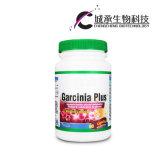 Extrait de plante sans effets secondaires Le garcinia Plus Capsule