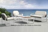 Sofá de vime ao ar livre da mobília 4PCS do Rattan do frame de alumínio barato (TG-1269)