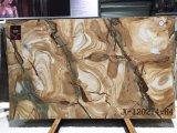 Espinella Gold Quartzite полированной плитки&слоев REST&место на кухонном столе