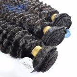 L'arricciatura profonda brasiliana impacchetta il tessuto di estensione dei capelli umani di 100%