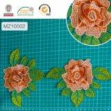 Corrección/corrección de la flor/accesorio 10001-10006 de la ropa