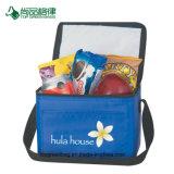 Aislamiento de alta calidad personalizado almuerzo hombro la bolsa de enfriador de viajes