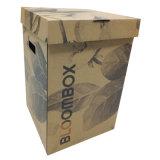 Плоские упаковочный картон букет с цветной печати